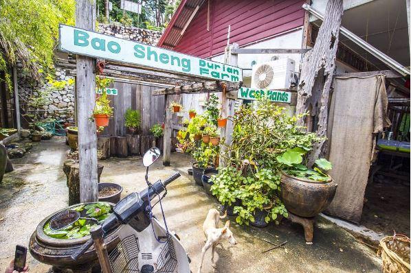 http://penangfoodie com/penang-street-food-2/ 2017-08